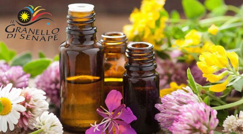GRANELLO DI SENAPE - offerta fiori di bach online