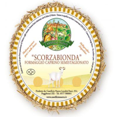 aperitivo formaggio caprino caseificio senese
