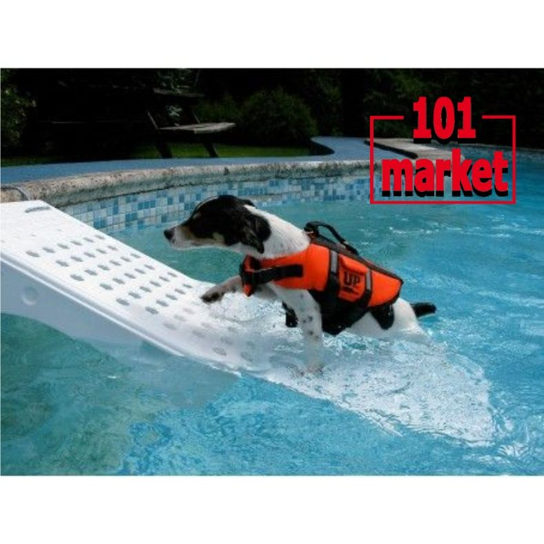 Offerta rampa risalita per cani piscina - Promozione accessori per cani a Poggibonsi