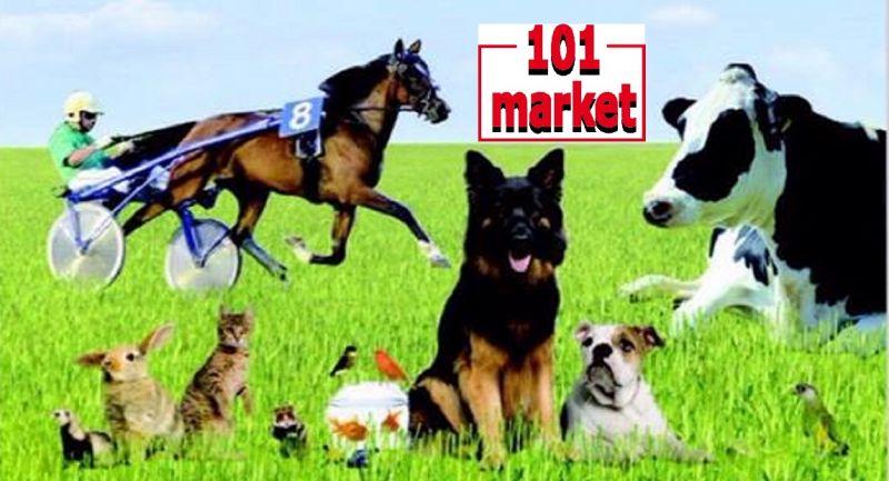 cerca vendita on line prodotti e articoli per animali Toscana - 101 MARKET
