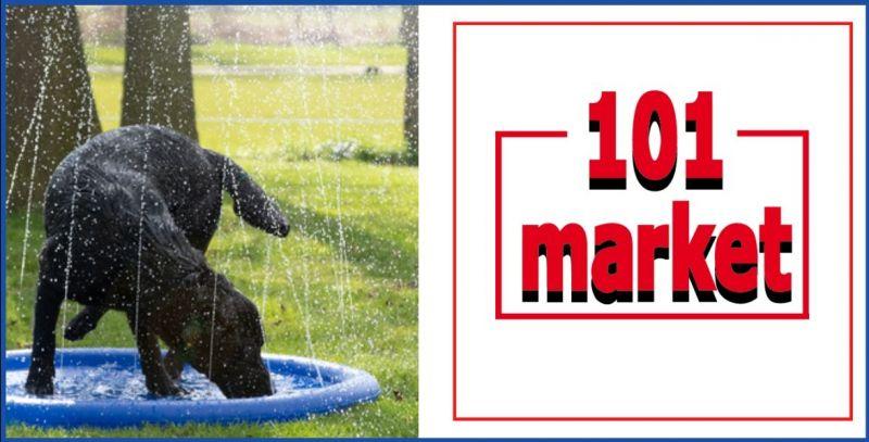 occasione giochi acquatici per cani e piscine per cani - 101 MARKET