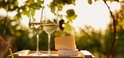 offerta vendita vino sfuso doc friuli venezia giulia occasione vendita vino e grappe trieste