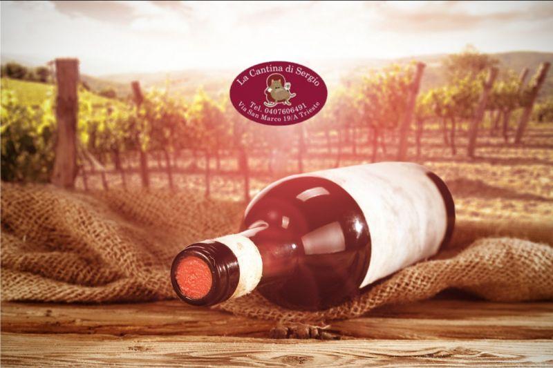 Offerta vendita spumante - occasione vendita vini sfusi doc friuli venezia giulia