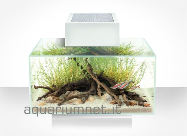 Acquario Askoll Fluval Edge 23 serie 2.0