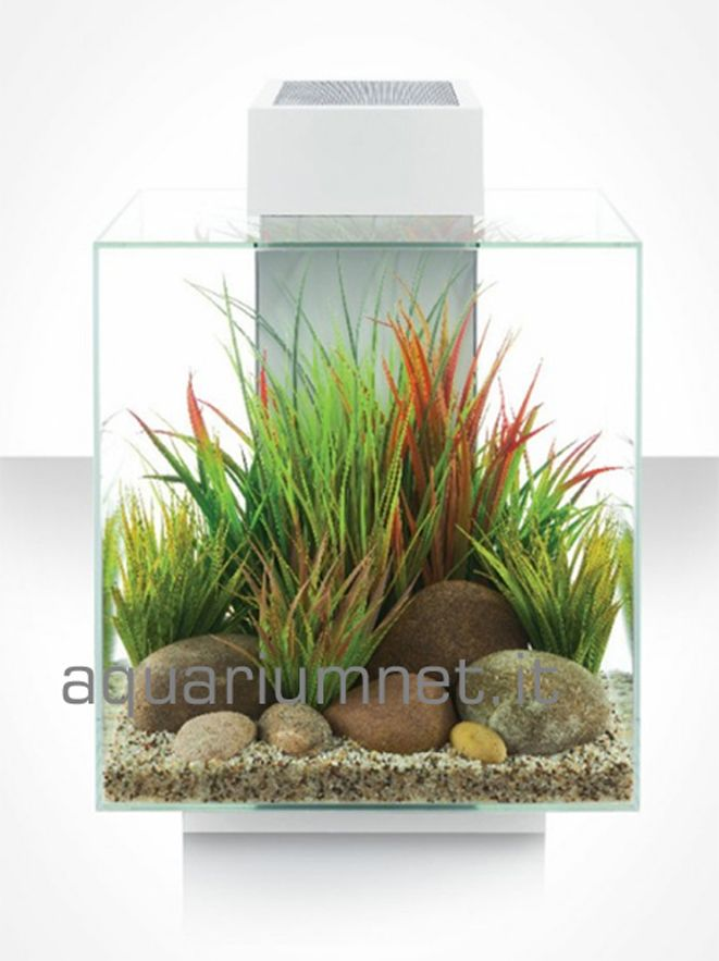 acquario Askoll Fluval Edge 46 2.0