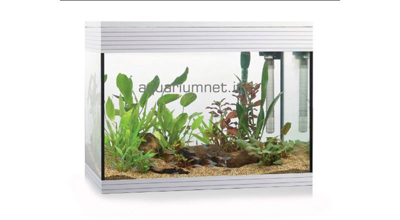 AQUARIUM - Acquario  Askoll Pure L