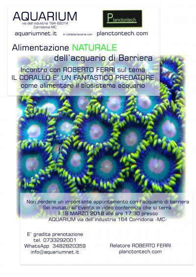 alimentazione naturale dellacquario di barriera con fitoplancton