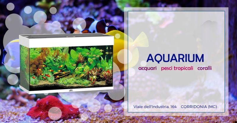 Offerta prodotti manutenzione acquario Macerata - Occasione Vendita Acquari Macerata