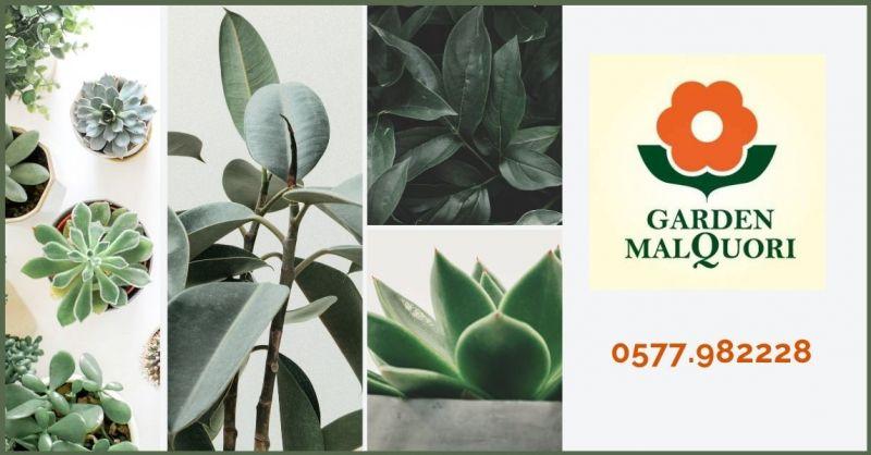 GARDEN MALQUORI - offerta vendita semi e piante da giardinaggio per tutte le stagioni
