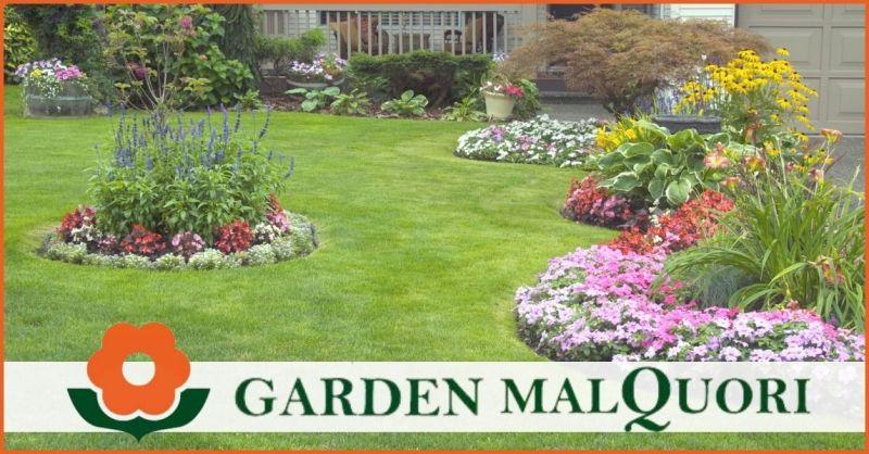 promozione piante da esterno e da appartamento a Siena -  offerta vivaio vendita fiori Siena e Poggibonsi