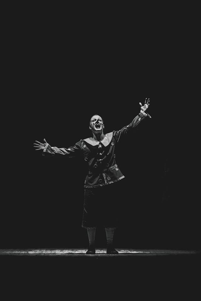 Pinocchio musicaltour 2019 teatro tradizione alfonso rendano cosenza matinee scuole