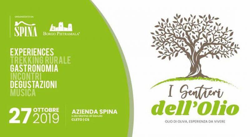 Offerta sentieri dell'olio Cleto - Promozione olio d'oliva Cosenza