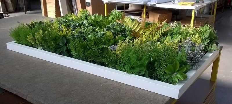 F.C.P. offerta giardino pensile con cornice bianca - promo giardino stabilizzato con cornice