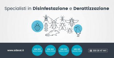 offerta servizi derattizzazione disinfestazione servizi igiene ambientale siderat