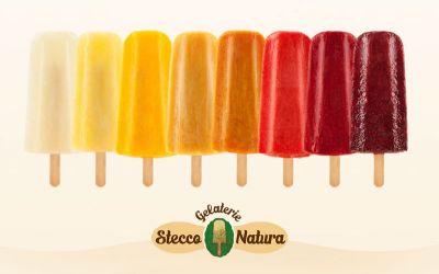 offerta gelateria franchising stecco natura gelati stecco natura