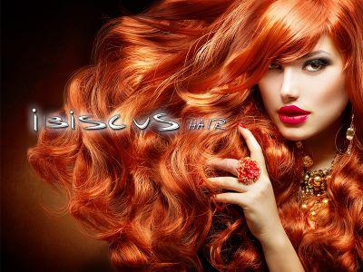 offerta taglio capelli promozione mercoledi si happy ibiscus hair