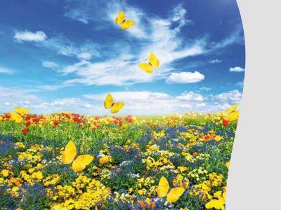 promozione pacchetto pasqua offerta popilia country resort agenzia viaggi blu gaja vacanze