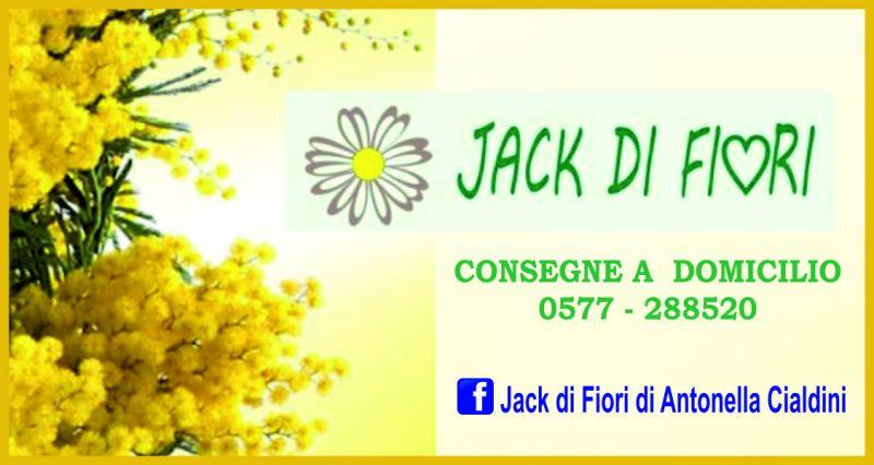offerta festa della donna vendita fiori e consegna fiori a domicilio Siena - JACK DI FIORI