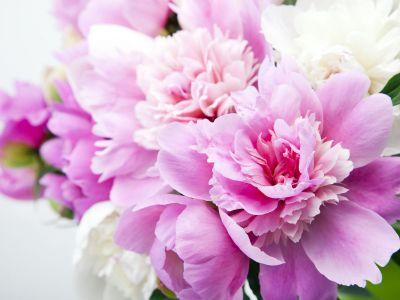 composizioni floreali e addobbi personalizzati