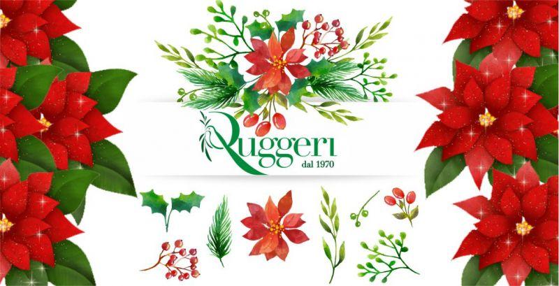 FLORICOLTURA RUGGERI  - offerta composizioni floreali natalizie decorare la casa