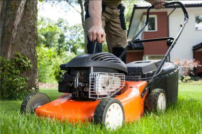 promozione attrezzi da giardino offerta riparazione attrezzi da giardino siena