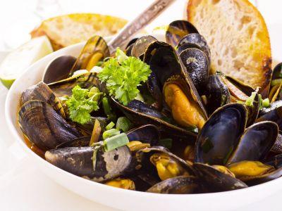menu antipasti di pesce all insomnia restaurant