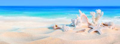 guki viaggi ti aspetta l estate e sempre piu vicina prenota la tua vacanza estate 2017