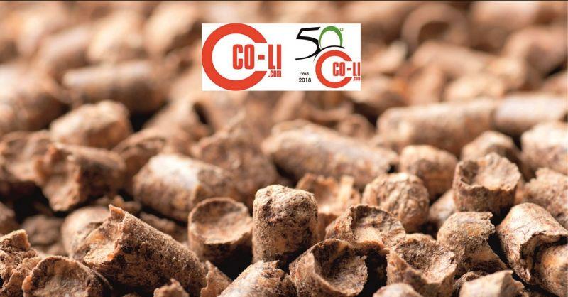 promozione vendita prestagionale pellet Poggibonsi - occasione vendita caldaie a pellet Siena