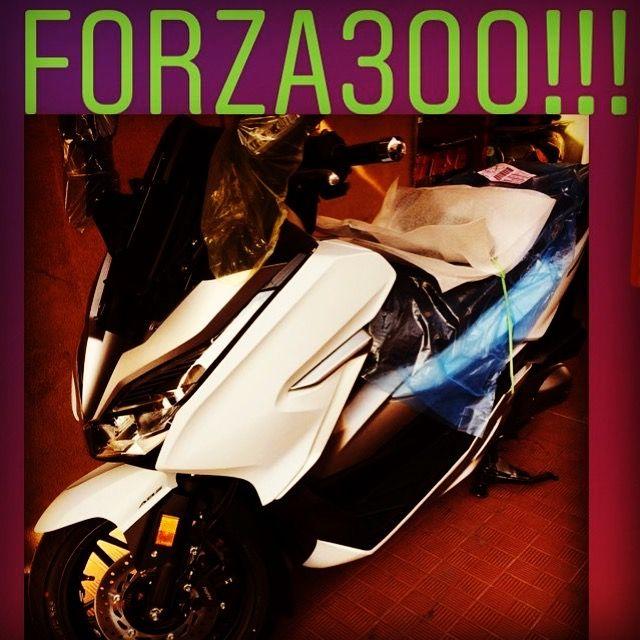 Nuovo modello HONDA FORZA 300 | Fratelli Labriola (Ventimiglia)