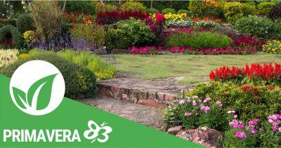 promozione manutenzione giardini primavera 83 elmas