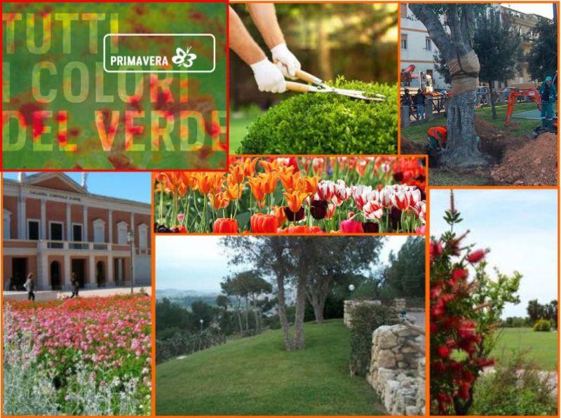 promozione progettazione aree verdi pubbliche e private - Primavera 83 Elmas