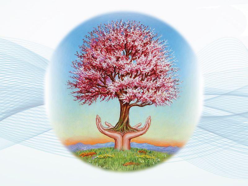 Promozione Erboristeria Cavallino - Offerta bellezza erboristeria- Erboristeria Natura e Salute