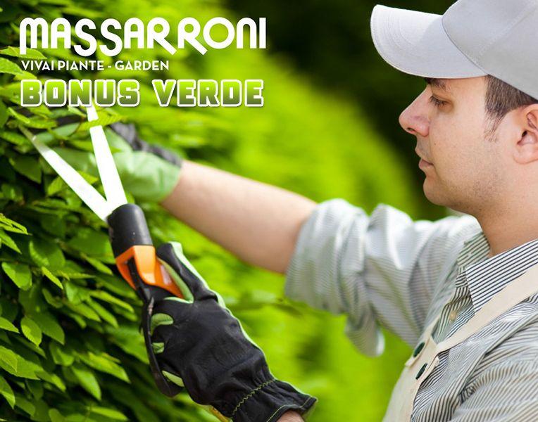 Offerta Bonus Verde 2019 - Promozione Incentivi Fiscali Verde - Vivai Massarroni