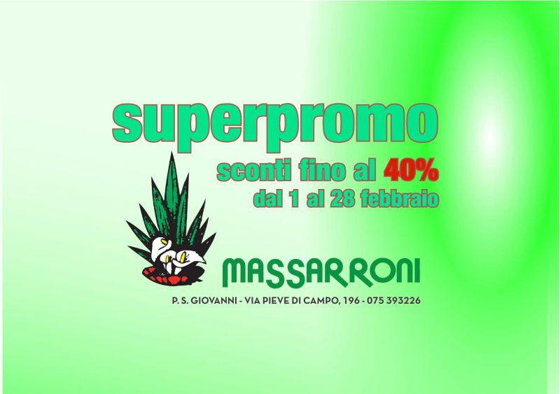 Vivai Massaroni offerta sconti - occasione piante da interno e da giardino