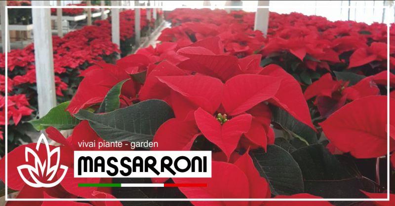 vivai massarroni offerta allestimenti floreali - occasione realizzazione giardini perugia