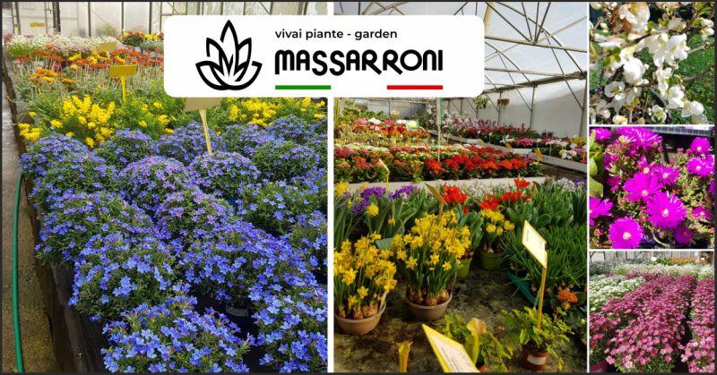 vivai massarroni offerta piante e fiori - occasione giardinaggio perugia
