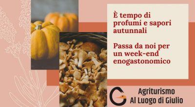 occasione menu autunnale a pordenone offerta weekend enogastronomico autunnale a pordenone
