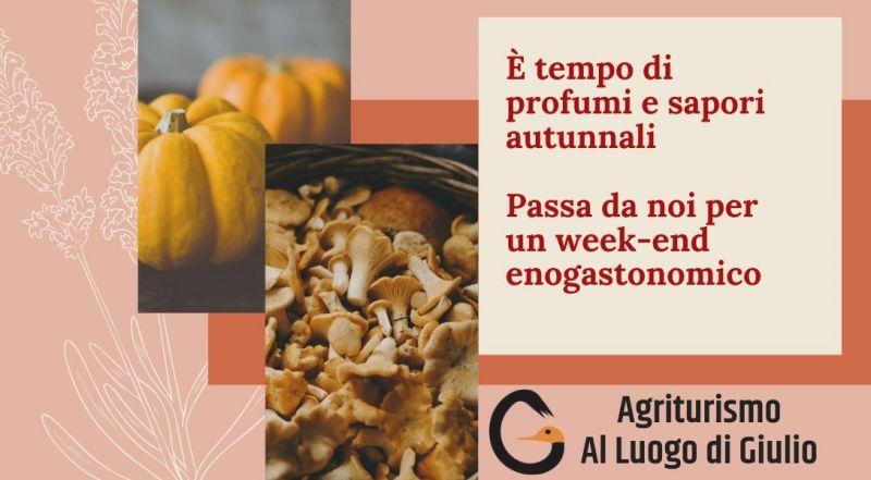 Occasione menu autunnale a Pordenone - Offerta weekend enogastronomico autunnale a Pordenone