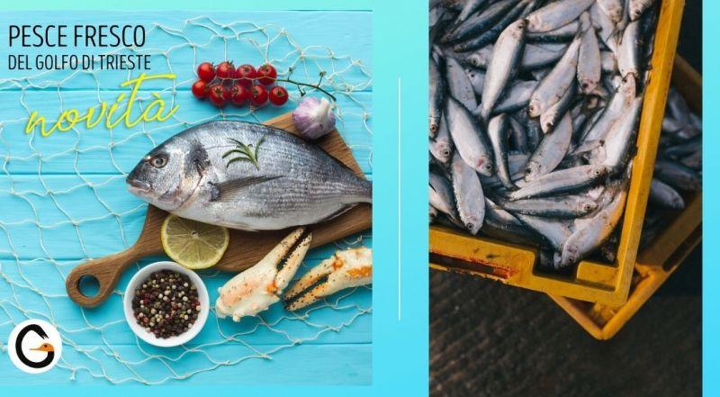 Occasione cucina con pesce fresco dal golfo di Trieste a Pordenone Maniago – Vendita ristorante con pesce di mare a Pordenone Maniago