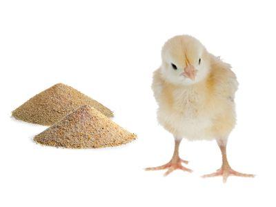 vendita mangime per animali da cortile e volatili