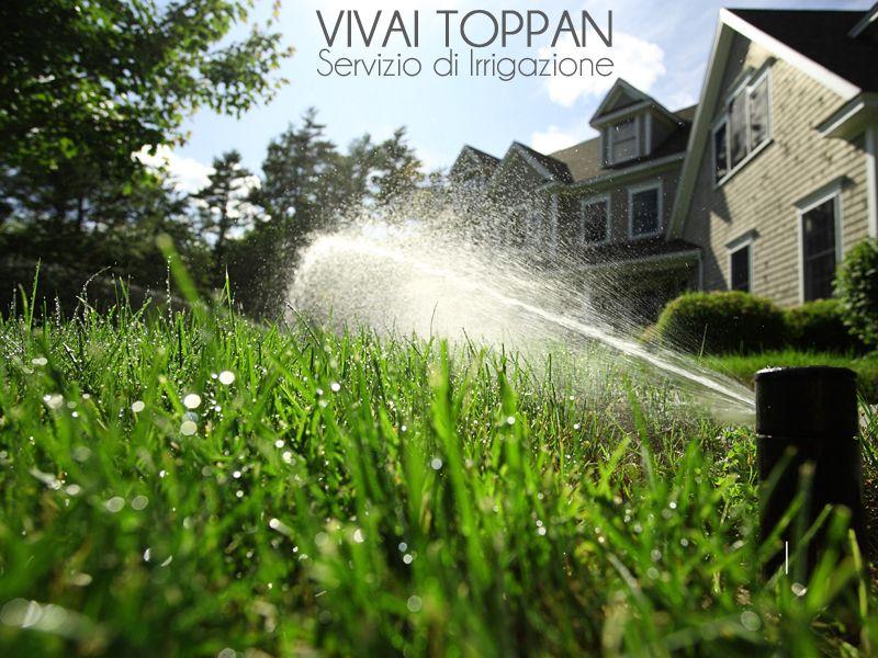 promozione irrigazione treviso offerta irrigazione giardini treviso vivai toppan