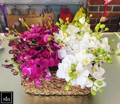 il negozio della fantasia occasione vendita composizioni floreali offerta idee regalo treviso