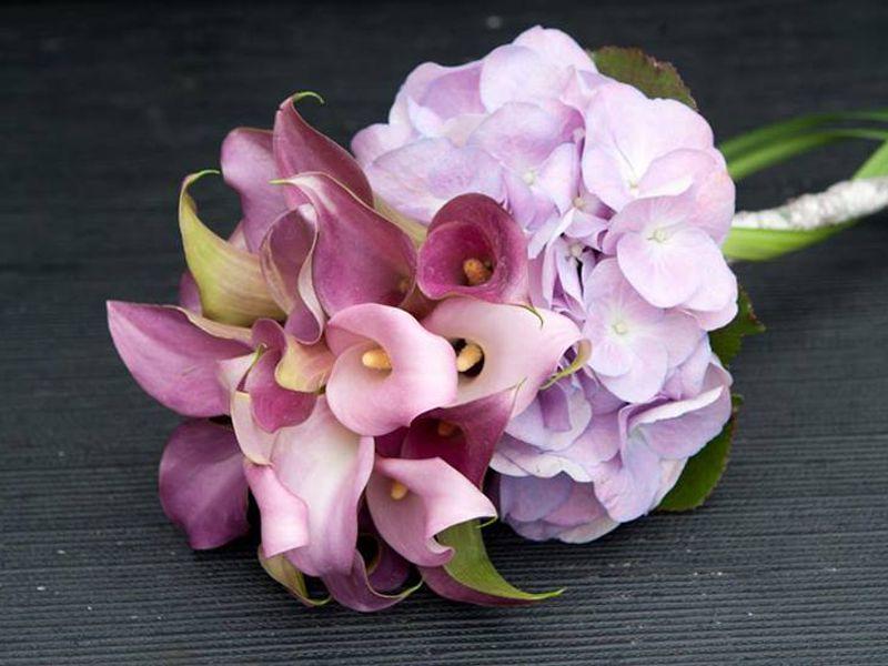 Promozione Fioreria - Offerta fiori recisi - Occasione fiori artificiali -Fioreria Guscio Verde