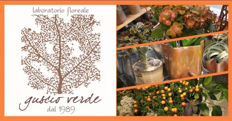 offerta composizioni autunnali casa Treviso - occasione arredamento autunno Treviso