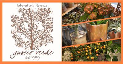 offerta composizioni autunnali casa treviso occasione arredamento autunno treviso