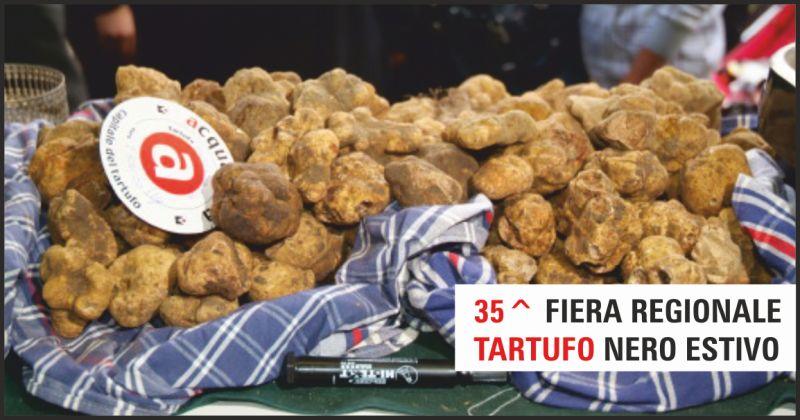 acqualagna offerta fiera regionale tartufo nero estivo - occasione tartufo pesaro urbino