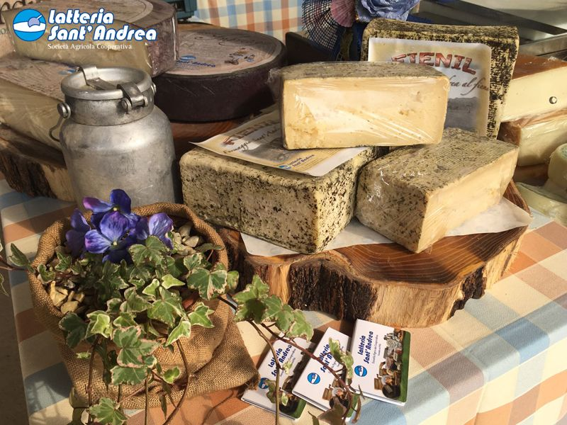 Offerta Caseus Veneti 2017  - Promozione prodotti Km0 - Latteria Sant'Andrea