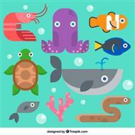 mangime x pesci