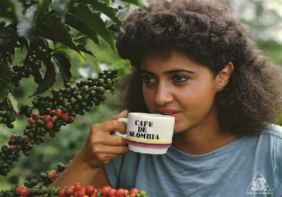 in colombia l 39 emancipazione della donna passa dal caff 232 diba 70 distributori professionali rassegna stampa