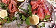 trattoria l 39 ortica specialit 224 pesce
